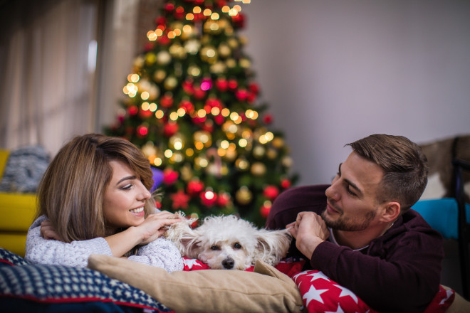 Couple with their dog whaiting for incoming holidays