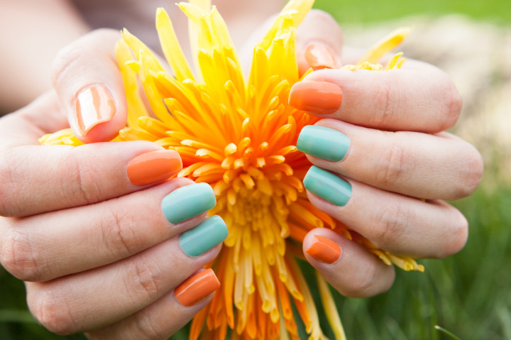 Close Up Of Woman's Hands On Flower