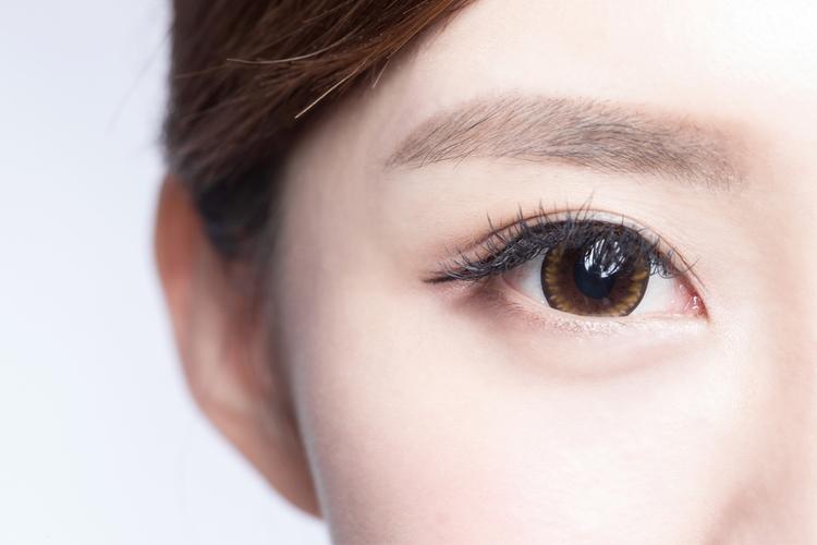 眉毛の毛周期