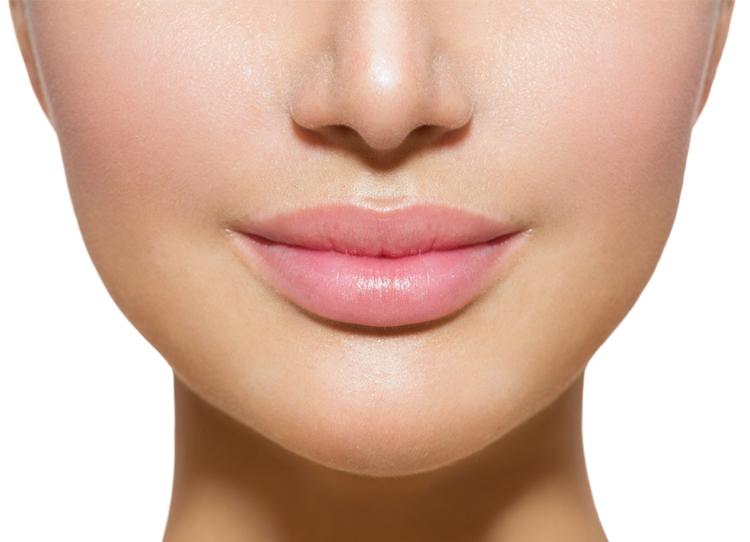 魅力的な唇