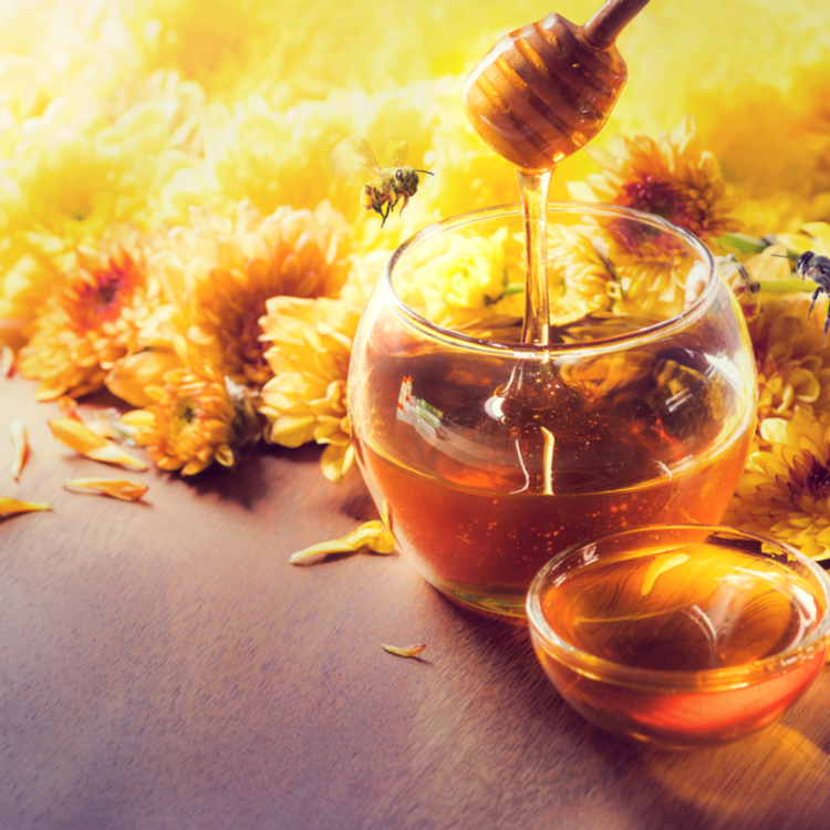 食べる美容液「ハチミツ」を全身に美容で取り入れるアイテム