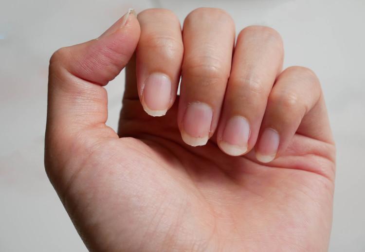 爪の乾燥に注意