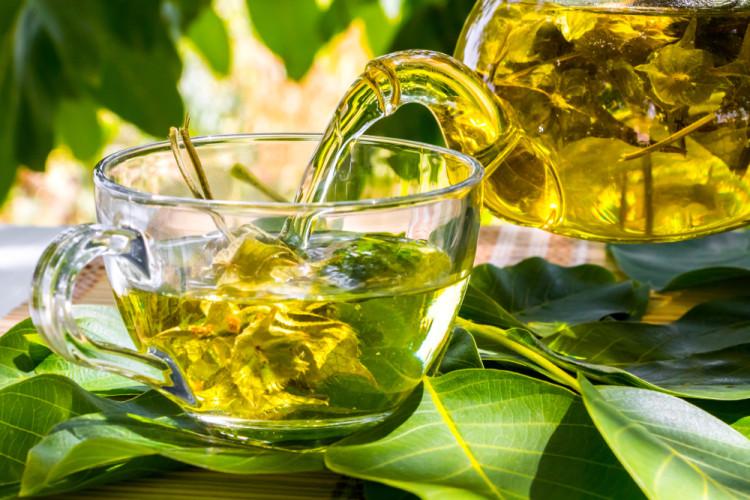 緑茶のティーパック