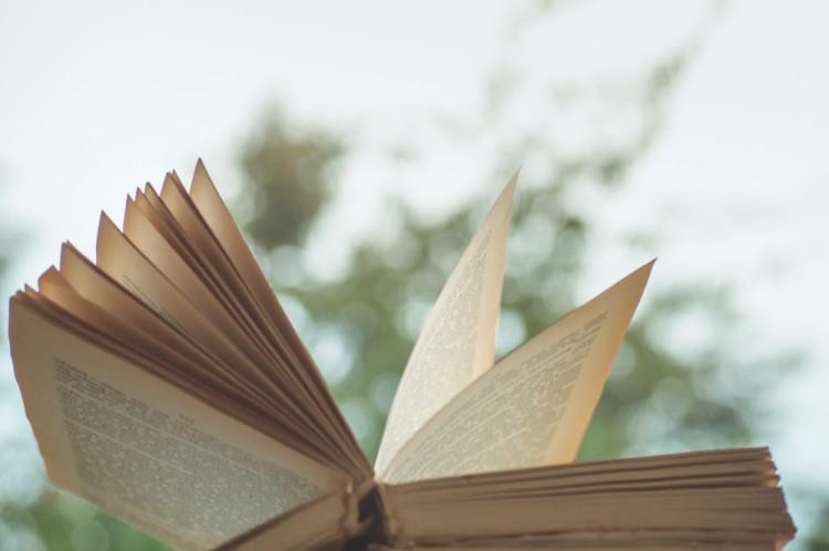 好きな本を読む