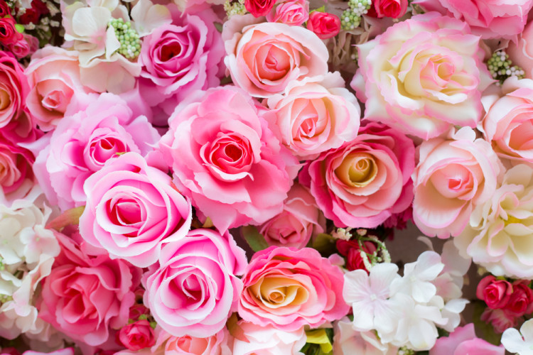 素敵なバラの香りで美人度アップ