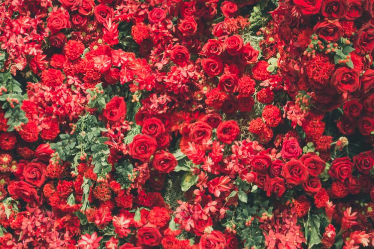 「赤」の持つ色の効果