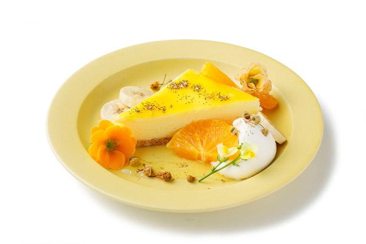 イエローチーズケーキ