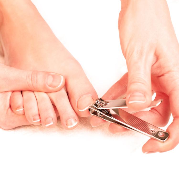 爪は健康のバロメーター