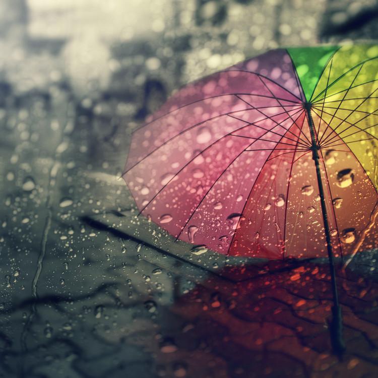 梅雨時期の環境とは?