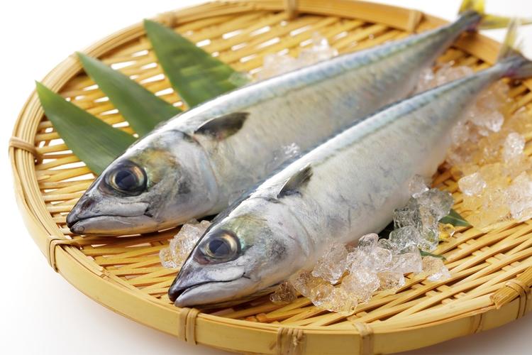 魚の種類によって違う!?