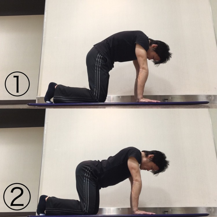 骨盤前傾方向への動きを高めるストレッチ