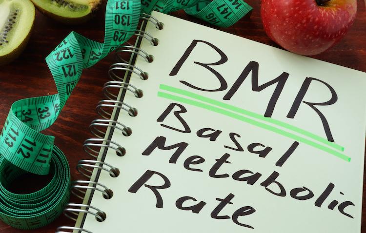 基礎代謝(BMR)とは?