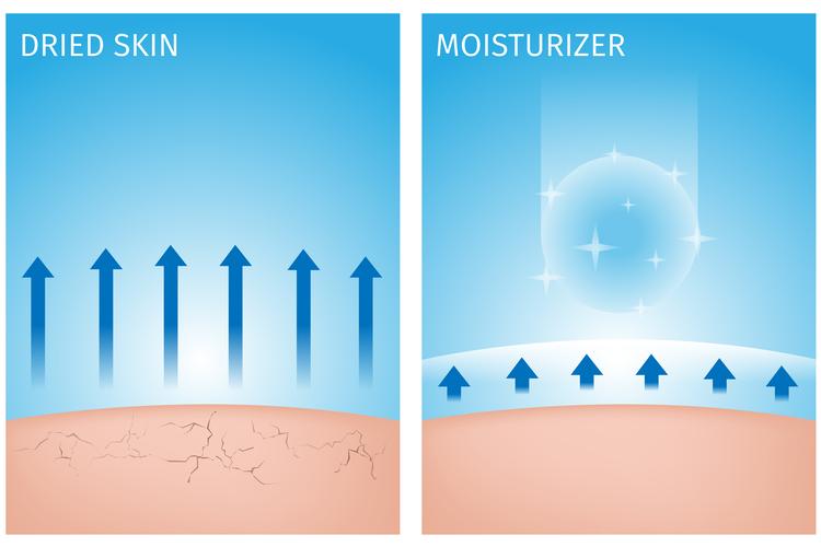 肌の水分量について