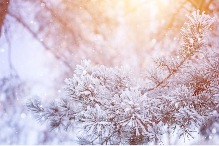 冬のうちに紫外線に負けない肌づくり