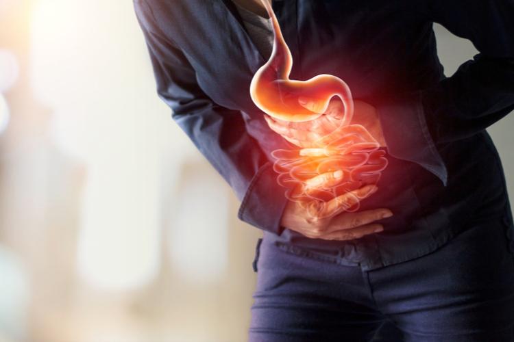 肌と腸内環境