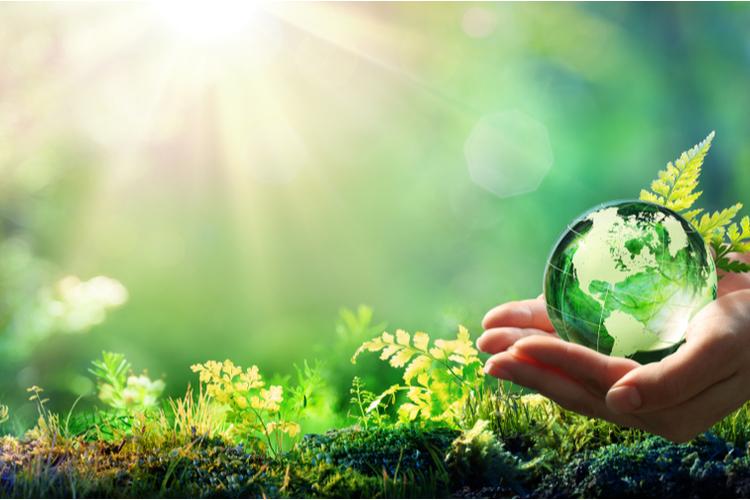 フレキシタリアンは地球環境を守る