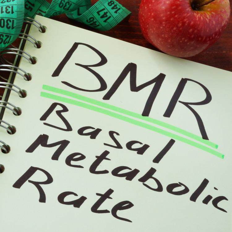 「基礎代謝」って何?